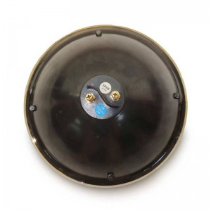 Foco LED RGB para piscina PAR56 25W 12V (Control por pulsos)