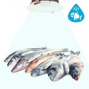 iluminación led para pescaderia - Focos LED