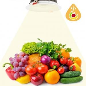 Focos LED empotrables 30W Especial para Fruterías y Verdulerías