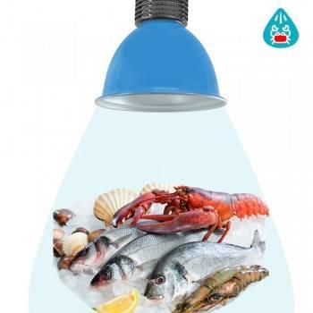 Campana LED 30W especial para pescaderías y marisquerías