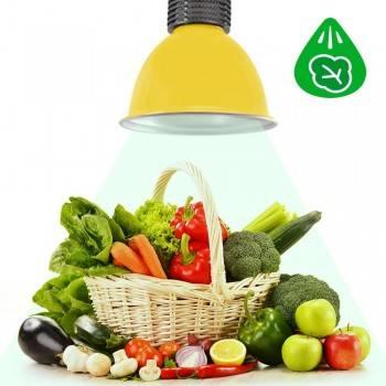 Campana LED 30W especial para Verdulerías