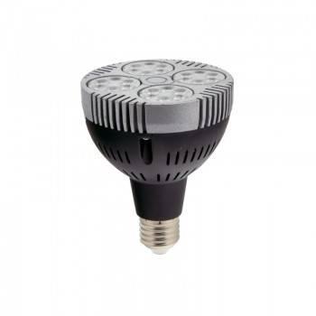 Bombilla LED PAR30 E27