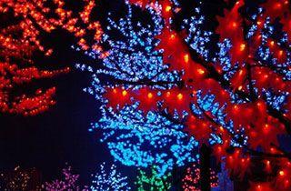 arboles de luces LED de diferente colores expuestos en la calle