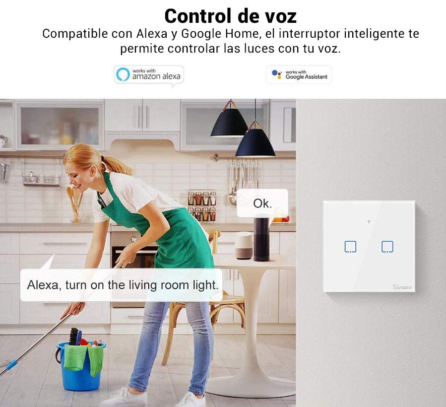 Alexa Google Home