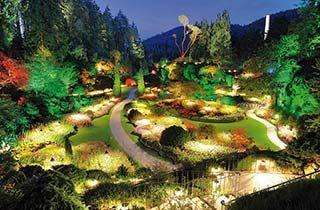 iluminación de colores con bombillas par led de todo un jardin