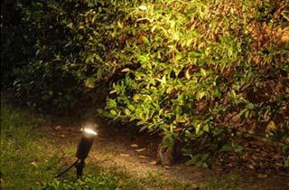 Pincho de jardin en primer plano iluminando arbustos
