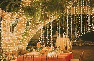 cortina de led iluminando arbol en jardin de casa