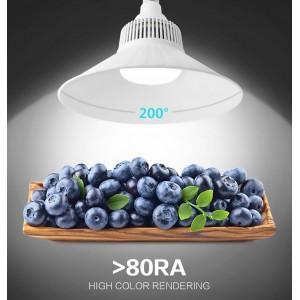 Lâmpada LED E40 100W 10.000lm 230V Uso industrial