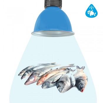 Campânula LED 30W especial para peixarias